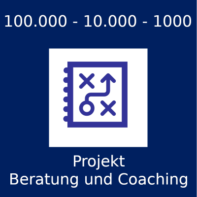 Coaching großer privater Projekte